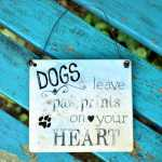 Schild DOGS leave PAW PRINTS on your HEART 13,5 x 15,5 cm...