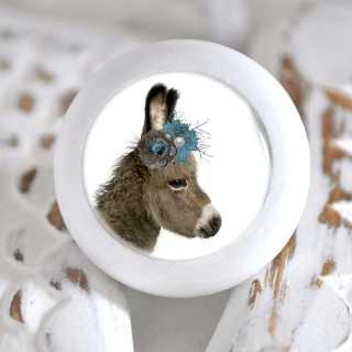 Möbelknopf mit Tierbaby-Motiv Esel