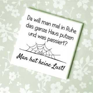 Magnet mit Spruch HAUSPUTZ aber keine Lust!